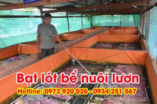 bạt lót bể nuôi lươn