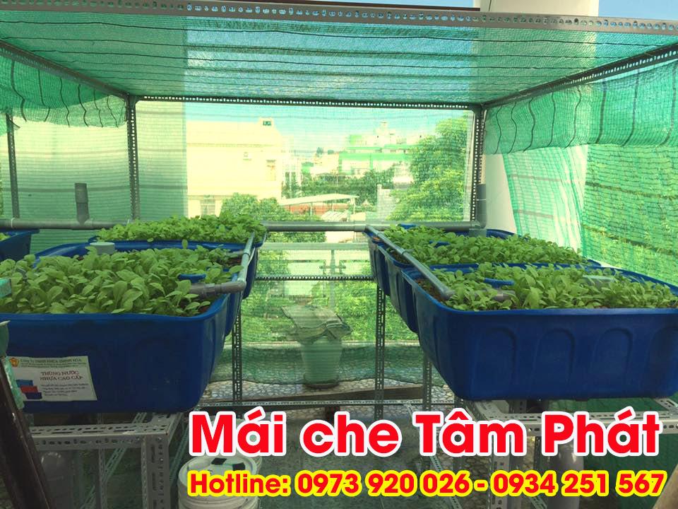 Làm mái che sân thượng trồng rau giá rẻ